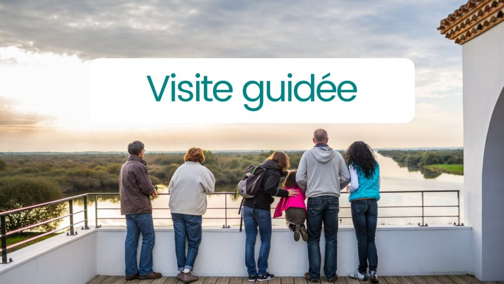 Visite-guidee
