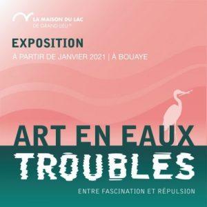 Newsletter janvier 2021 - art en eaux troubles