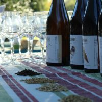 Soiree Beers and Birds © MDL Marion